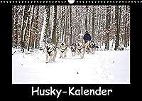 Husky-Kalender (Wandkalender 2022 DIN A3 quer): Sibirische Huskies (Monatskalender, 14 Seiten )