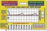 R-Cat Insignia EKG