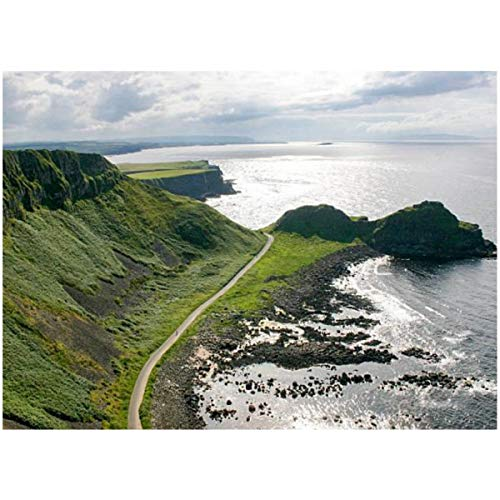DIY Paint by Numbers North Causeway Coastline N Ireland for Adults Kids Beginners Painter Colorful Oil Paintings Gift Kit with Paintbrushes 16x20inch