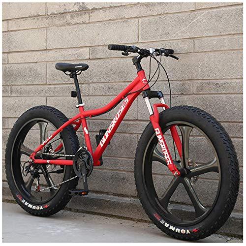 Liu Yue 26 Pulgadas Bicicleta de Montaña, Adulto Bicicleta BTT Hardtail, Doble Freno Disco, Neumático Gordo MTB Bicicleta,Rojo,27 Speed 5 Spokes