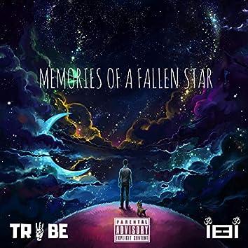 Memories of a Fallen Star