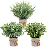 OurWarm 3 Pack Mini Potted Fake Plants Artificial Eucalyptus Plants, Plastic Small Faux Rosemary Plants with Gift Tags for Rustic Farmhouse Home Bathroom Office Desk Indoor Greenery Tabletop Decor