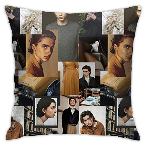 Timothee Chalamet Pillow Cases Polyester Pillow Cover Pattern Decorative Washable for Sofa Home Decor 18 X 18