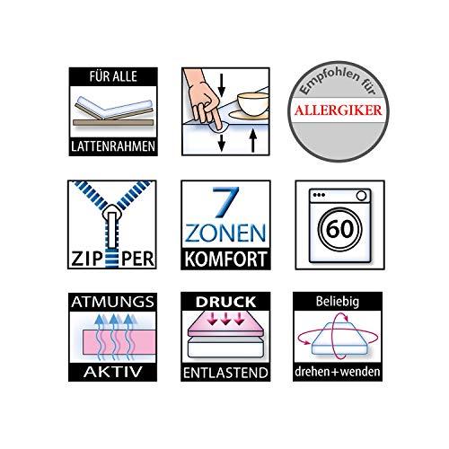 Camas de ABC Ortho Matra ABC de Dream ortopédico de 7 Zonas ...
