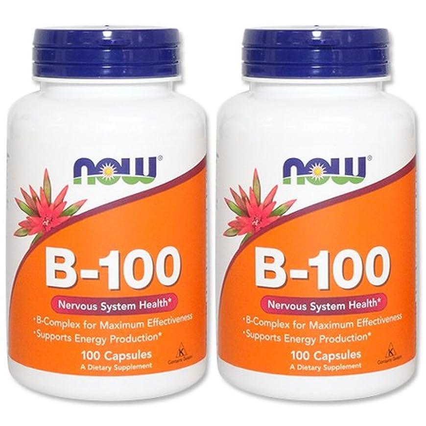 事実アコード評論家【2個セット】 [海外直送品] ビタミンB100 コンプレックス(11種類のビタミンB群をバランスよく高含有)(海外直送品)