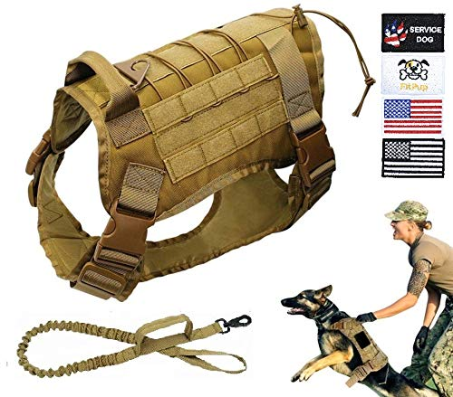 FitPup Tactical Dog Harness and Bungee Dog Leash Set for Medium Large & XL Dogs – K9 Military Molle Vest for Service & Training with Metal Buckles & Loop Panels – Adjustable Hunting Hiking Walking