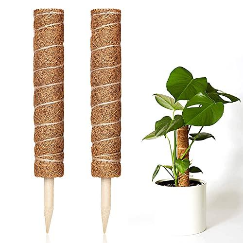 Kokos Totempfahl, Kokos-Moos-Stab Stangen, 30cm Rankstäbe Pflanzenstütze Totempfahl Zur Erweiterung Der Pflanzenstütze, Klettern Von Zimmerpflanzen, Kriechpflanzen (2 Stück)