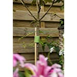 VELCRO Brand VEL-30089-AMS Wide Extra Support Garden Ties Strong Roses Shrubs Vines and Heavy Plants, 1in x 35ft, Green… 6 EXTRA STRONG SUPPORT: Suitable for Shrubs Roses Perennials Large Tomatoes or any Plant in Need of Strong Support; perfect addition to a landscaper's tool box GENTLE ON PLANTS: Soft side won't scratch or damage plants; wraps onto itself for a secure hold; plant supports are easy to reposition for growing blooms WEATHER RESISTANT: Strong gripping action keeps ties securely in place during stormy and inclement weather
