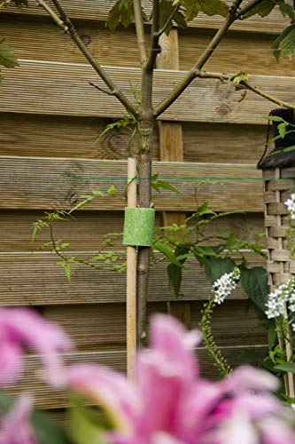 VELCRO Brand VEL-30089-AMS Wide Extra Support Garden Ties Strong Roses Shrubs Vines and Heavy Plants, 1in x 35ft, Green… 3 EXTRA STRONG SUPPORT: Suitable for Shrubs Roses Perennials Large Tomatoes or any Plant in Need of Strong Support; perfect addition to a landscaper's tool box GENTLE ON PLANTS: Soft side won't scratch or damage plants; wraps onto itself for a secure hold; plant supports are easy to reposition for growing blooms WEATHER RESISTANT: Strong gripping action keeps ties securely in place during stormy and inclement weather
