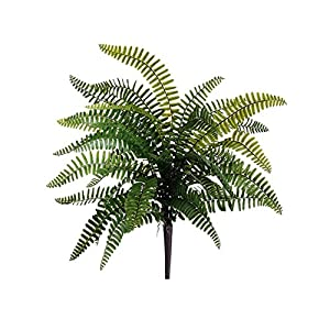 "Silk Flower Arrangements Arcadia Silk Plantation 19"" Boston Fern BushGreen(pack of 12)"