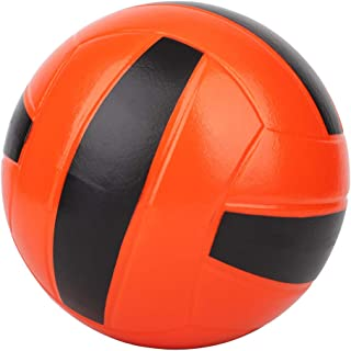 Best volleyball for kids Reviews