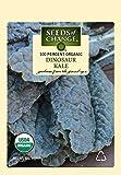 Seeds of Change 7889 Certified Organic Dinosaur Kale