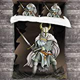 AIMILUX Funda Edredón,Cruzado con Armadura Pesada,Caballero del Orden,con una Espada en Sus Manos,Ropa de Cama Funda Nórdica,1(140x200cm)+2(50x80cm)