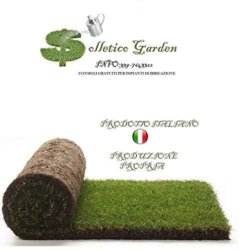 Vero prato pronto a rotoli di 4,5mq 1^ scelta in erba naturale, NO sintetica sintetico (9 rotoli) per giardino