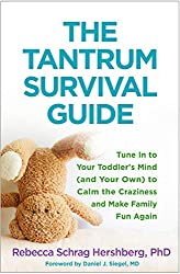 Mistakes You May Be Making When Responding To Tantrums 2
