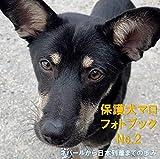 senen zengaku wanko siengata photo book hogoken maro 2: byoukiwo norainufureaihiroba photo book (Japanese Edition)