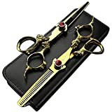 Tijeras profesionales de corte de pelo de 5.5 pulgadas para peluquería Tijeras de peluquería Set Vintage Antiguo Patrón Dragón Cizalla (Plata)