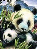 Lienzo de Bricolaje Regalo de Pintura al óleo,Panda Animal 40x50cm,DIY Pintura...