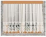 kollektion MT Spitzen-Store Vera Naturfarben mit 30 cm breiter Spitzenkante aus Echter Plauener Spitze mit Reihband Fertiggardine