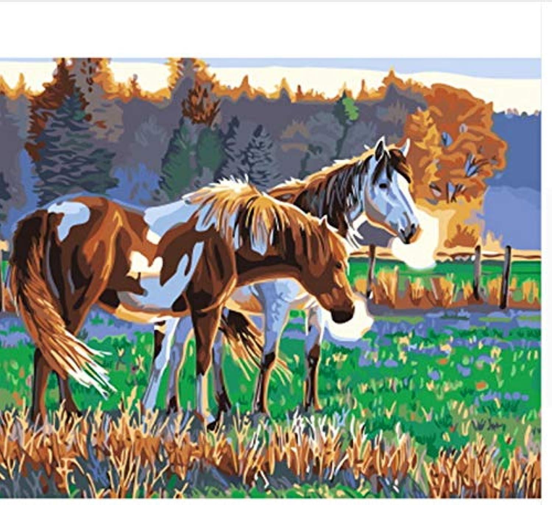 CZYYOU DIY, Ölgemälde Von Nummer Malen Nach Zahlen Für Für Für Wohnkultur Leinwand Malerei Pferd, Ohne Rahmen, 50x60cm B07Q8KJZGM  | Adoptieren  1a365b