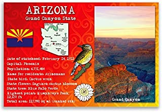 ARIZONA STATE FACTS postcard set of 20 identical postcards. Post cards with AZ facts and state symbols. Made in USA.
