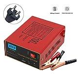 12V / 24V Caricabatterie Mantenitore per Auto,Intelligente Universale per Moto,AC 110-220V per 6-100Ah con Schermo LED per Auto Full Automatico-Protect Caricatore