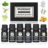 Anself 6PCS Aceites Esenciales para Humidificador, Aceites Esenciales de Plantas Naturales con Aroma Puro, Esencias para Humidificador, Aceite Perfumado
