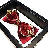 CDYEGSJ Cravate Accessoires Costumes de Cravates de Luxe for Les Hommes de Mariage Classique Rouge Bowtie Creative Décor Métal Bow Tie Hommes (Color : B)