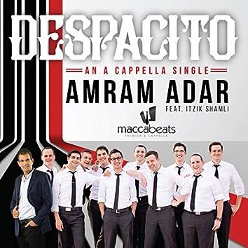 Despacito (feat. Maccabeats & Itzik Shamli) [Acapella]