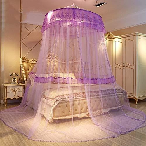 Irinay European Princess Dome Cama Suspendida Chic con Casual Dosel Mosquitera Doble Hogar Encriptado Cortina De Mosquito Engrosada G Queen1 (Color : Colour, Size : Size)
