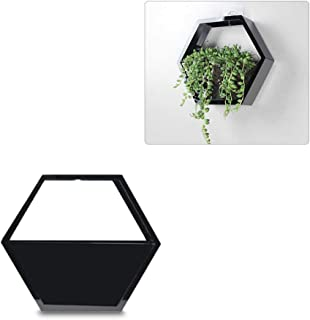 DAYOLY Wall Hanging Fish Bowl Tank Clear Acrylic Hexagon Wall Mounted Vase Planter Flower Pot Terrarium for Gold Fish and Beta Fish Plant Decoration