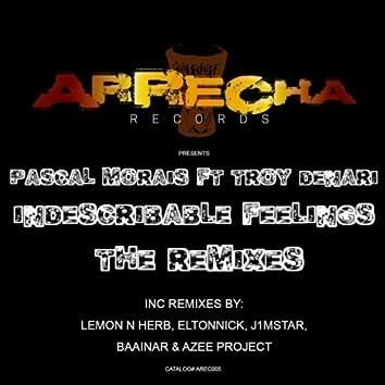 Indescribable Feelings (The Remixes)