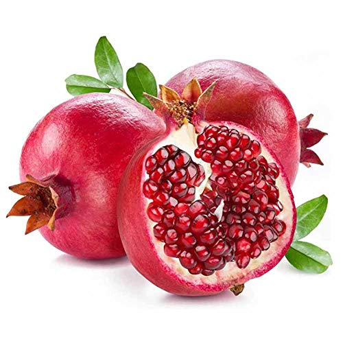 Organic Pomegranate Fruit Tree Seeds, 20+ Premium Quality Tree Seeds, Punica Granatum Red Seeds