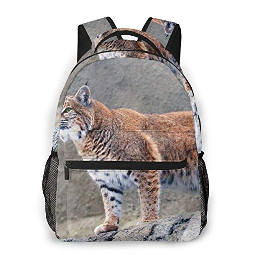 Multi-Function Backpack Lynx Big Cat Men and Women Casual Style Canvas Backpack School Bag,