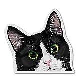 WIRESTER Fridge Magnet Decoration for Kitchen Refrigerator, Black White Tuxedo Cat