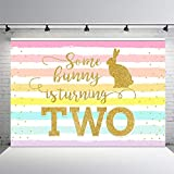 MEHOFOND 7x5ft Bunny Girl Happy 2nd Birthday Party Backdrop Rainbow Rabbit Gold Pastel Spring Easter Some Bunny Two Birthday Photography Background Photo Banner for Cake Table Supplies