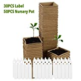 Ardentity - Confezione da 50 vasi di semi di fibre biodegradabili, biodegradabili, 50 vasi...