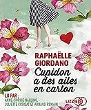 Cupidon a des ailes en carton - Lizzie - 03/01/2019