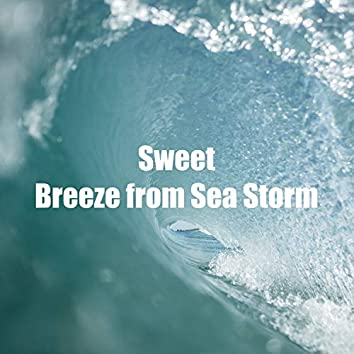 Sweet Breeze from Sea Storm