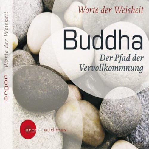 Der Pfad der Vervollkommnung audiobook cover art