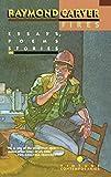 Fires: Essays, Poems, Stories (Vintage Contemporaries)