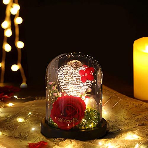Rosa Bella y Bestia, Rosa Elegante Cúpula de Cristal con Base Pino Luces LED, Alimentado por USB, Regalos Magicos para Día de San Valentín Aniversario Bodas Decoración