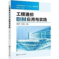 工程造价BIM应用与实践(高等教育BIM十三五规划教材)