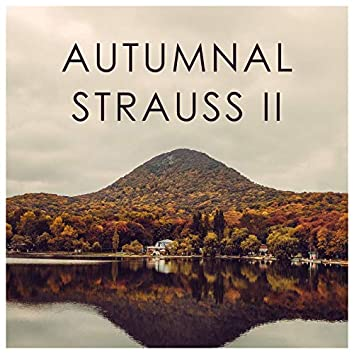 Autumnal Strauss II