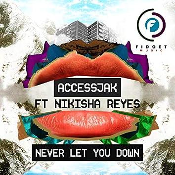Never Let You Down ft Nikisha Reyes