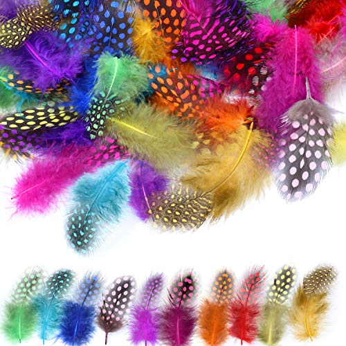 120 piezas Plumas manualidades, MWOOT Plumas de Faisán 5-13 cm Plumas Naturales para Pascua Máscara de Catcher Sueño Prendas de vestir DIY Artesanía Sombrero