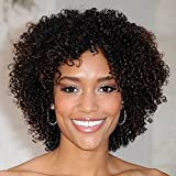 Exvogue Dark Brown Short Kinky Curly Wig Fluffy Springy Small Curls Synthetic Hair Replacement Wigs for African American Women (Short_Dark Brown)