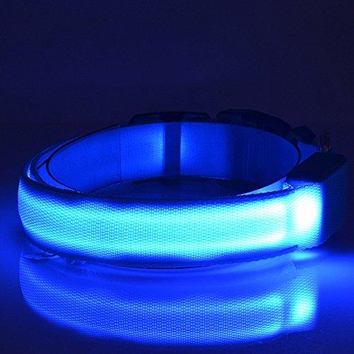 VANGOLD Nylon Pet Dog Collar Night Safety LED...