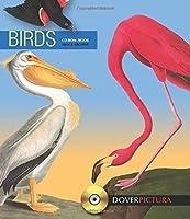 Birds (Dover Pictura Electronic Clip Art)