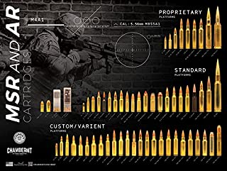 MSR and AR Cartridges Poster